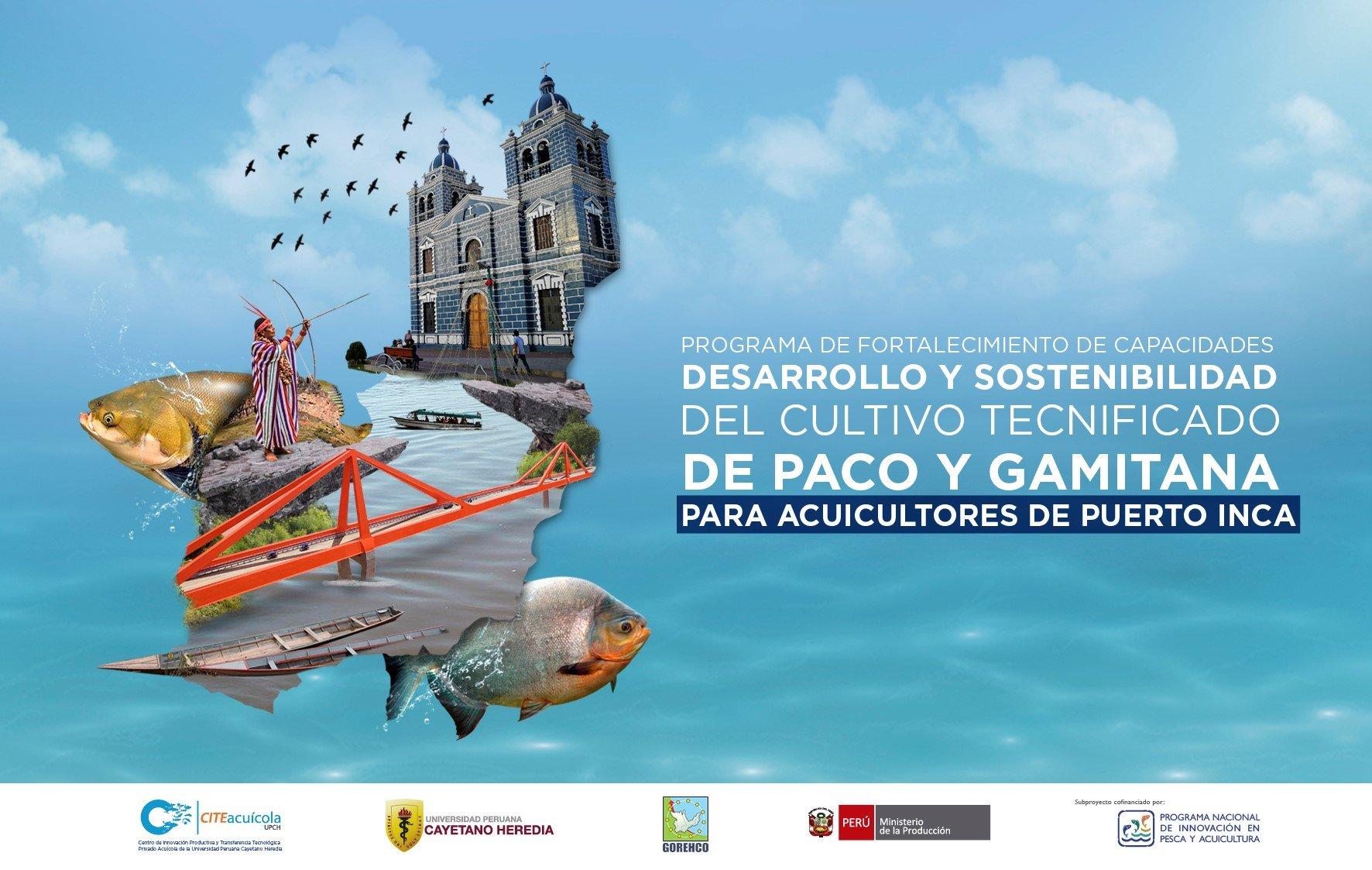 Proyecto puerto inca